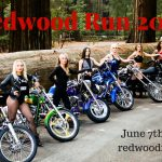 Redwood Run June 7-8, 2019 - Richardson Grove RV Park, Garberville, CA