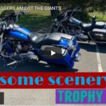 TROPHY BAGGERS AMIDST THE GIANTS | Riding Humboldt County